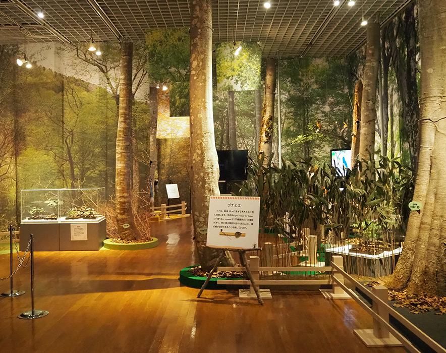 四季の小径の入口の展示
