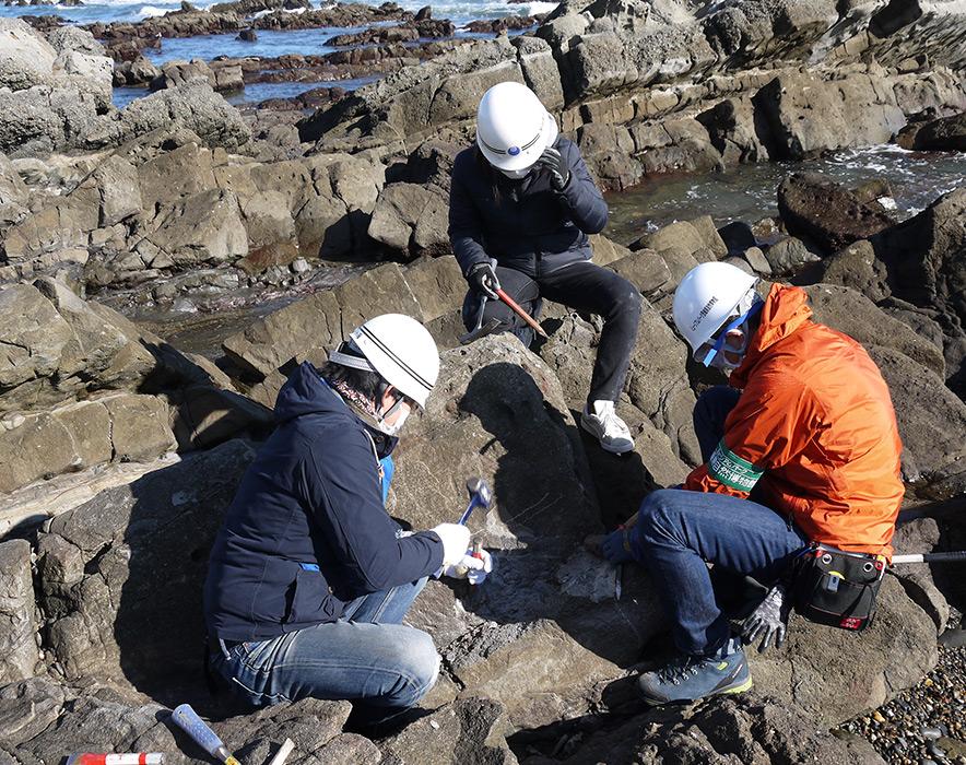 化石発掘のようす(ひたちなか市)