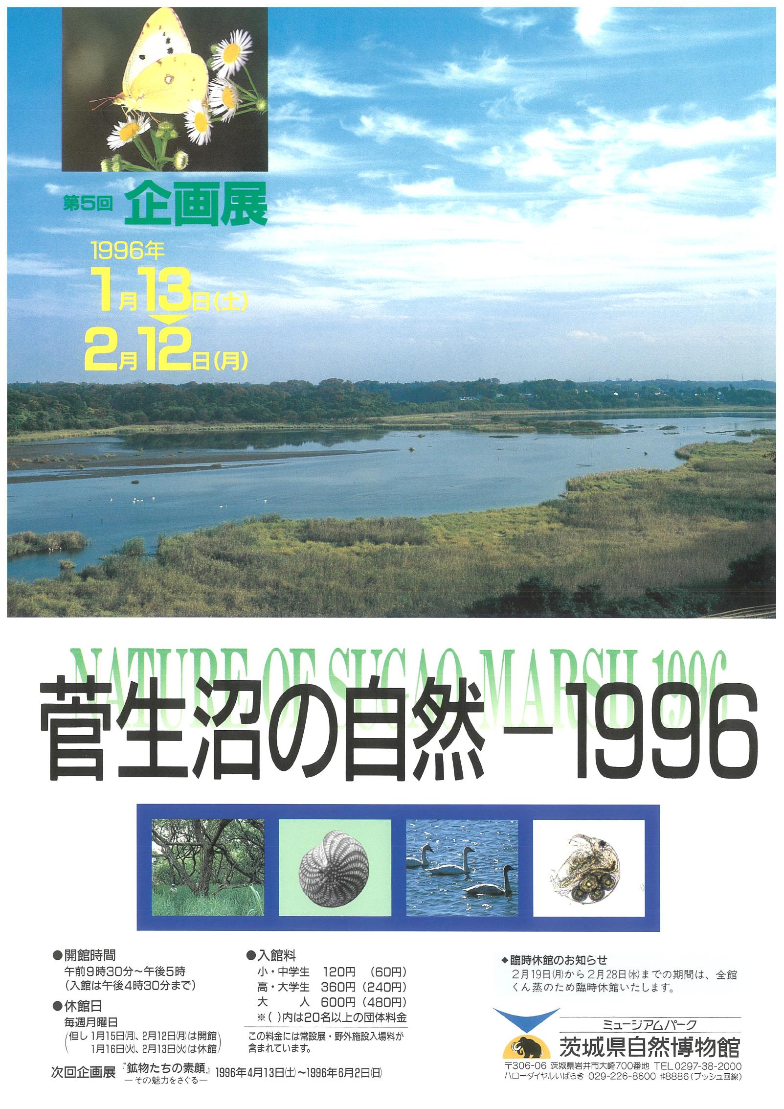 菅生沼の自然-1996