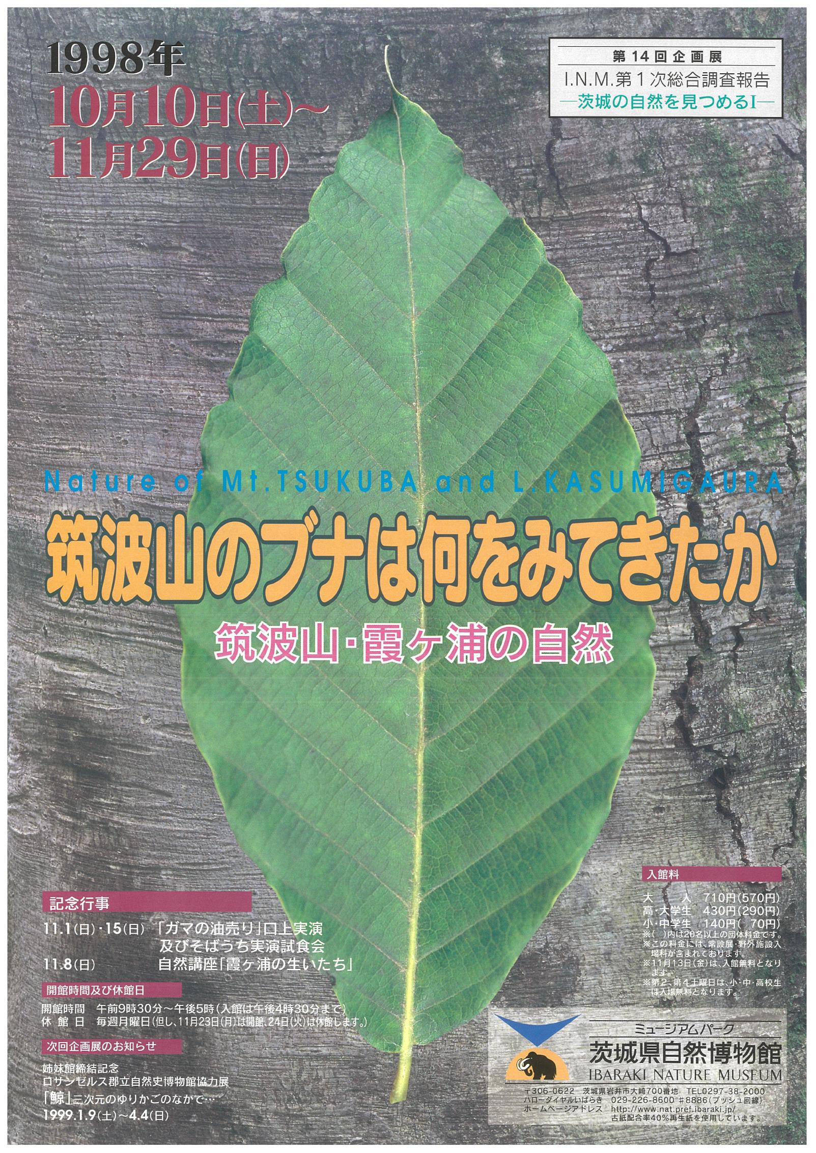 筑波山のブナは何をみてきたか -筑波山・霞ヶ浦の自然-