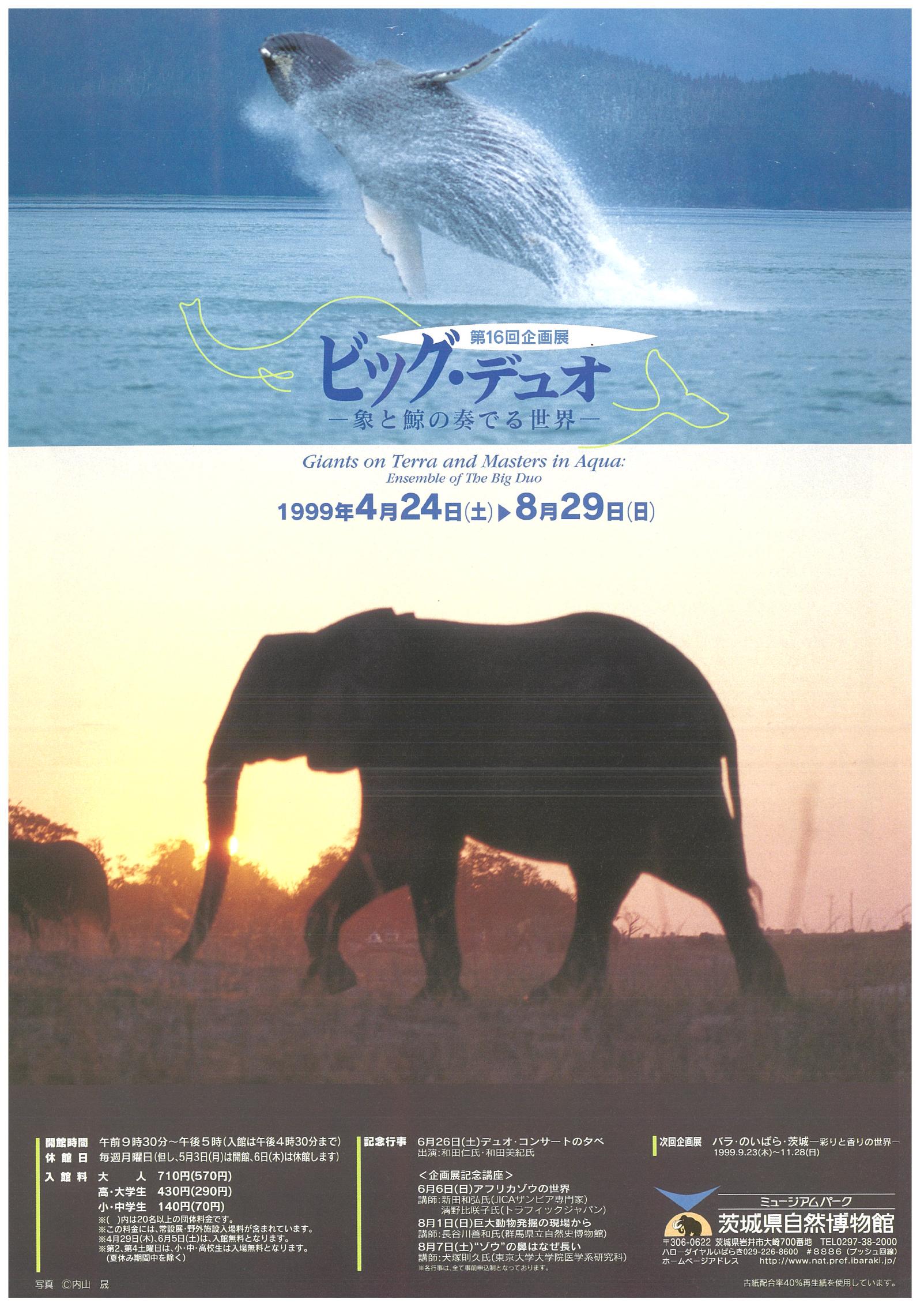 ビッグ・デュオ -象と鯨の奏でる世界-