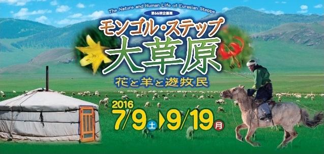 モンゴル・ステップ・大草原 -花と羊と遊牧民-