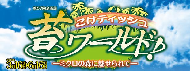 こけティッシュ 苔ワールド -ミクロの森に魅せられて-