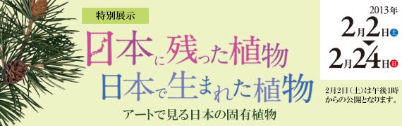 日本に残った植物 -日本で生まれた植物-
