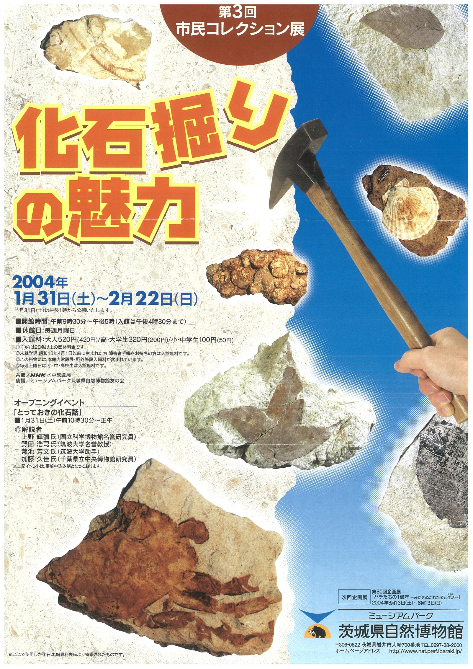 化石掘りの魅力
