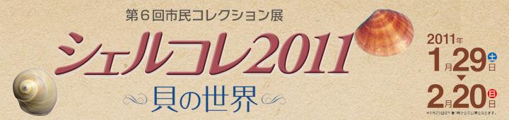 シェルコレ2011 -貝の世界-